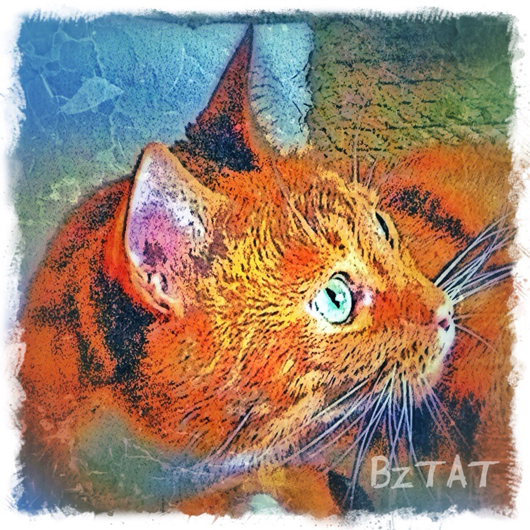 10-Orange-Tabby-Cat-Digital-Portrait-BZTAT