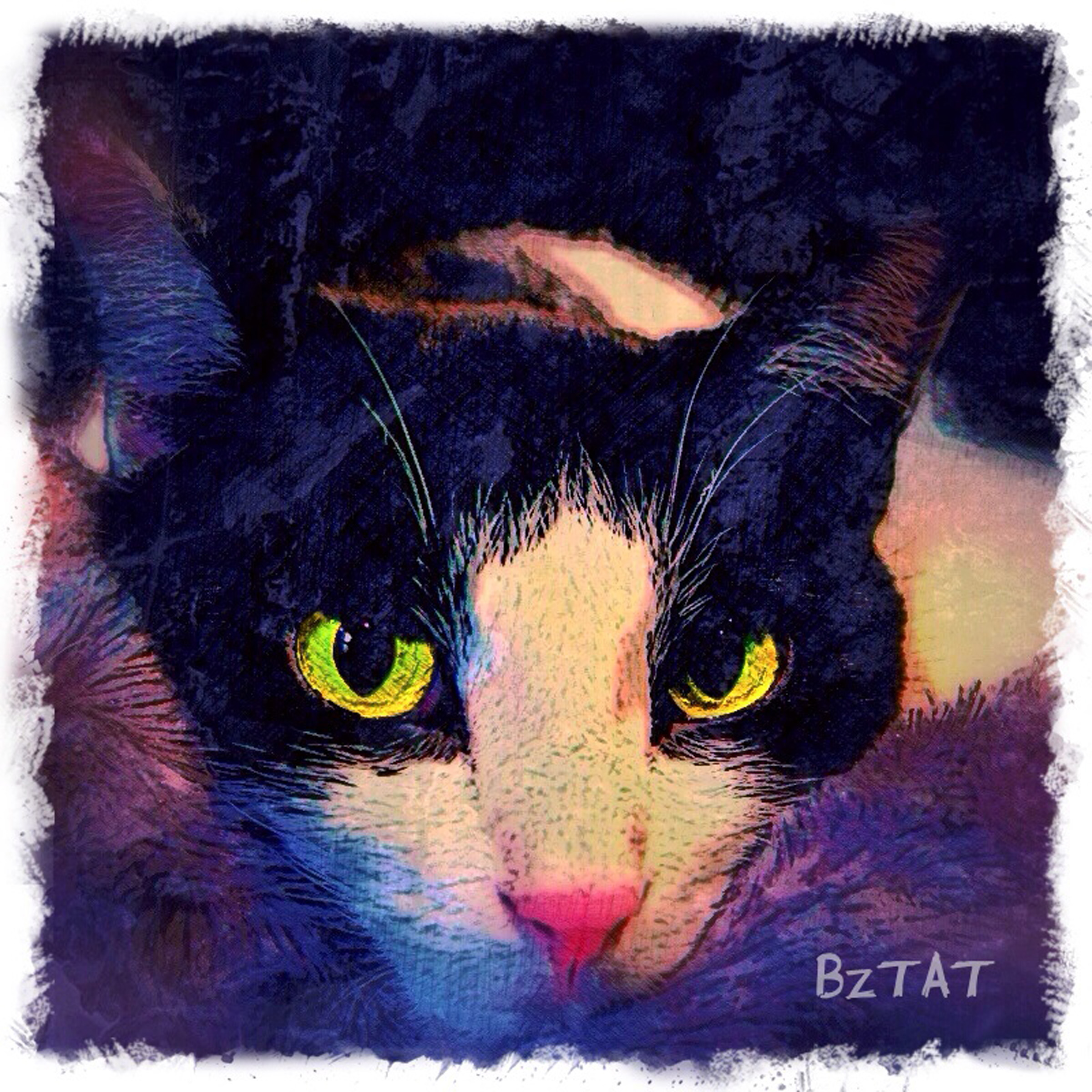 3-Digital-pet-portrait-cat-art-calendar-BZTAT