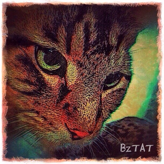 5-Digital-pet-portrait-cat-art-calendar-BZTAT