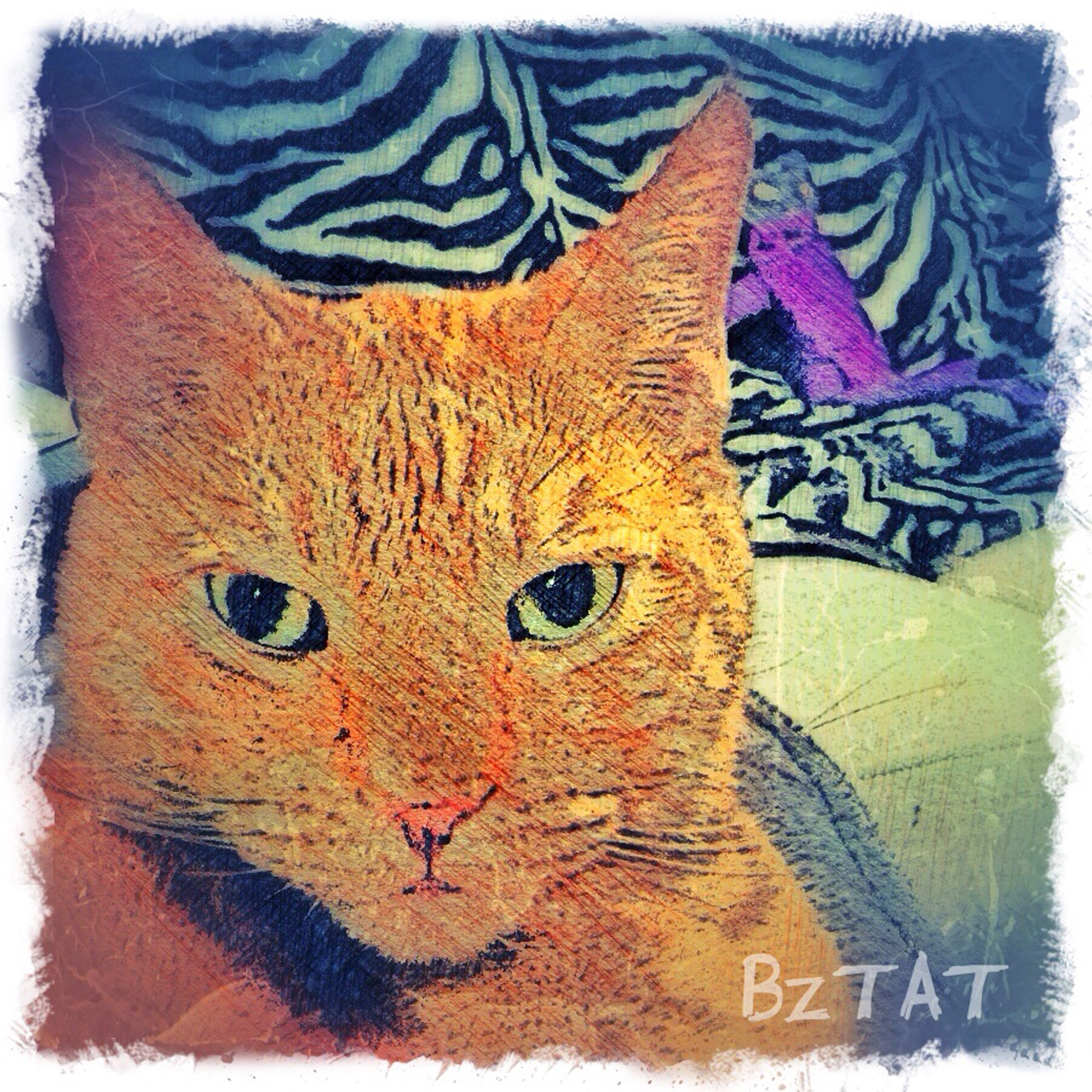 8-Digital-pet-portrait-cat-art-calendar-BZTAT