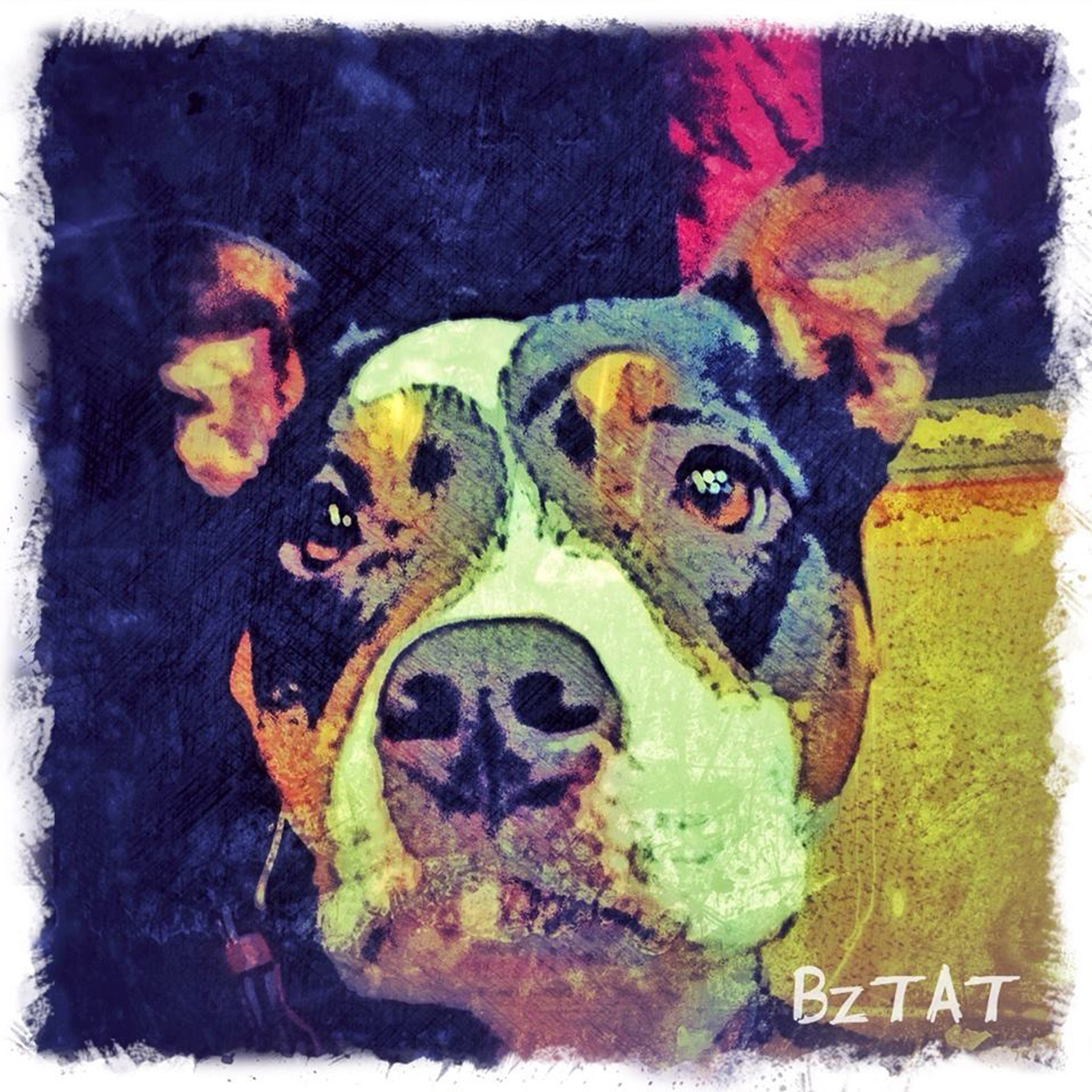 11-Digital-pet-portrait-dog-art-calendar-BZTAT