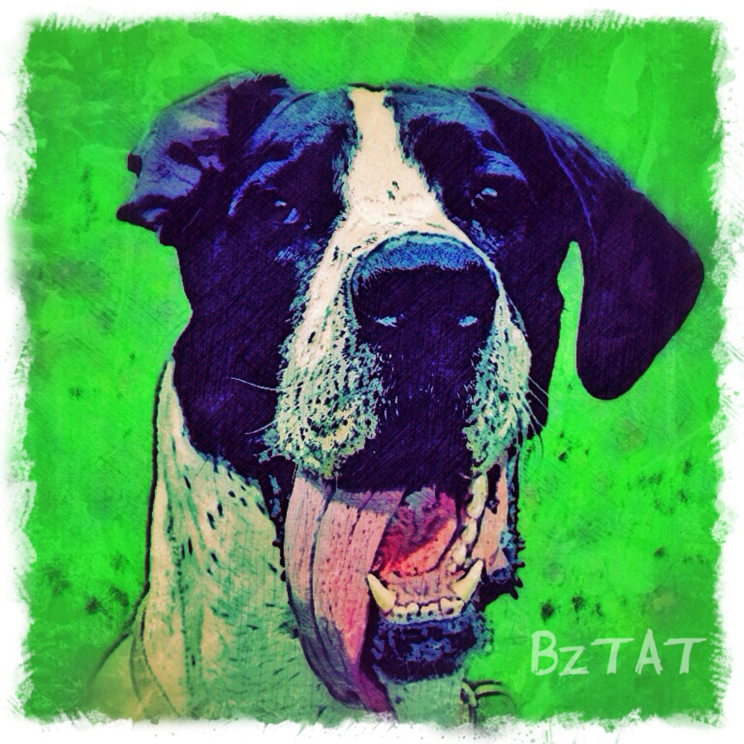 6-Digital-pet-portrait-dog-art-calendar-BZTAT