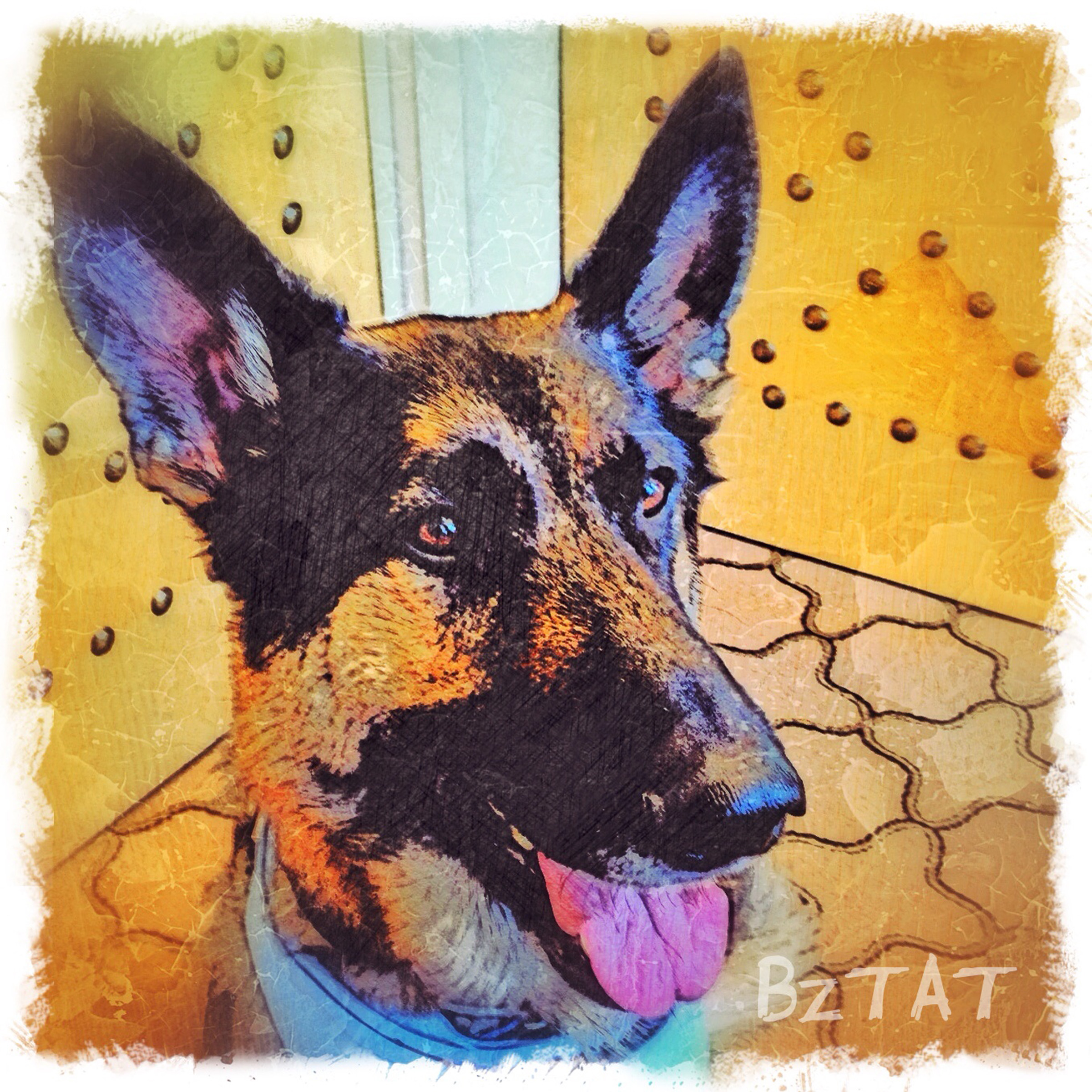 9-Digital-pet-portrait-dog-art-calendar-BZTAT