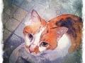 orange and white cat digital pet portrait by Artist BZTAT