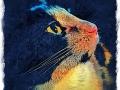 tortoise shell cat digital pet portrait by Artist BZTAT