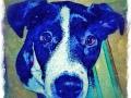 Black and white digital pet dog portrait by BZTAT