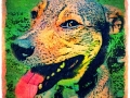 digital pet dog portrait by BZTAT