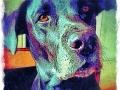 Black dog digital pet dog portrait by BZTAT