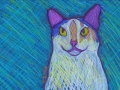 Calico-white-cat-drawing-BZTAT-LR