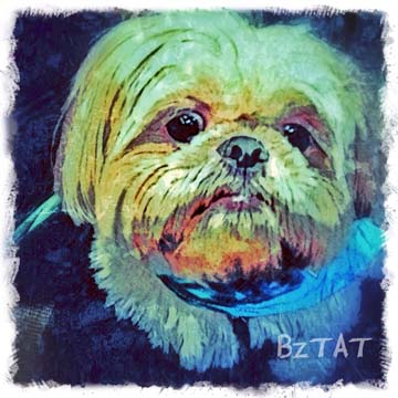 Custom Digital Pet Portrait by BZTAT-LR