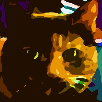 Tortoise Shell Cat - Custom Digital Fine Art Pet Portrait by Animal Artist BZTAT