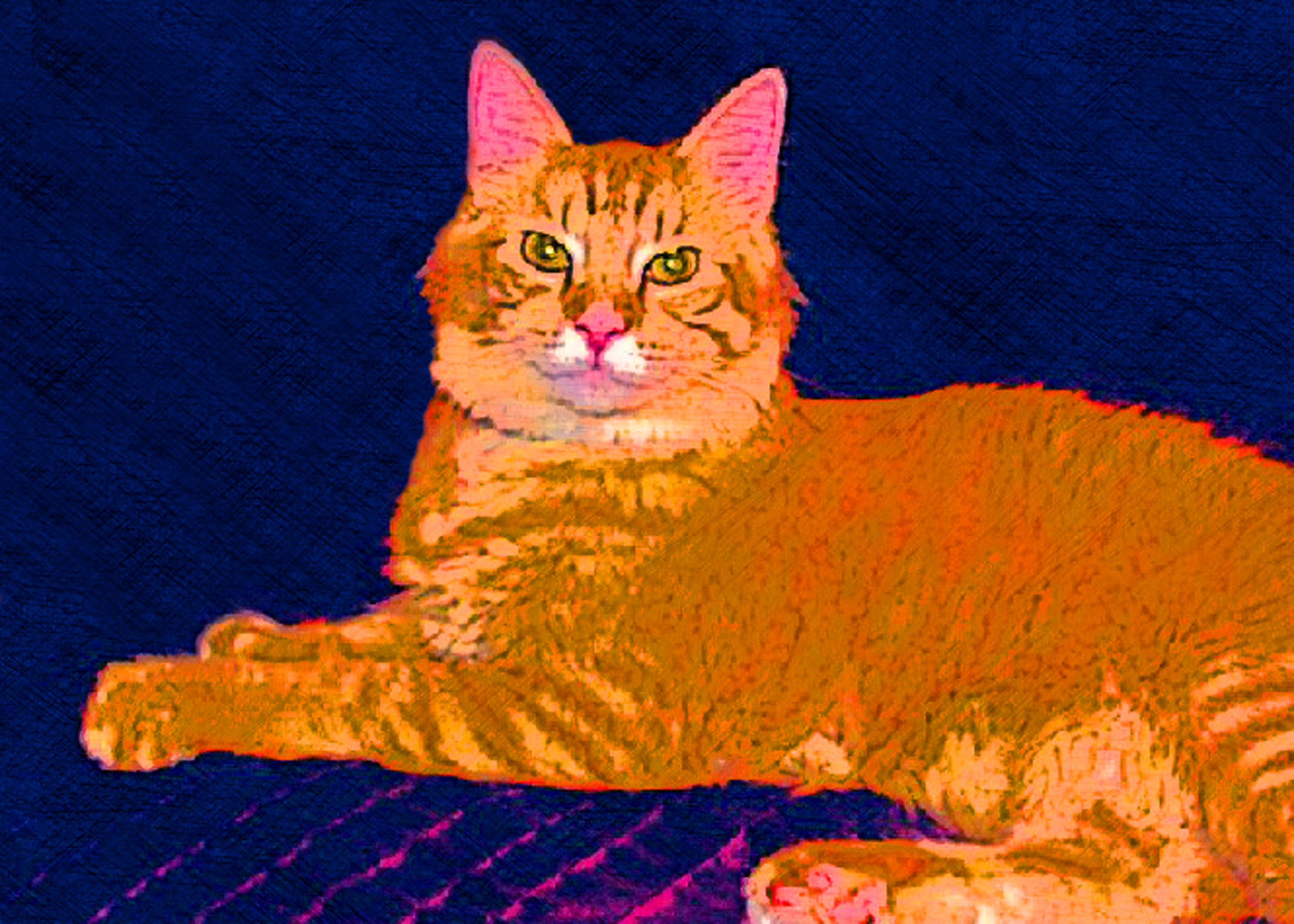 Orange Tabby Cat Custom Digital Fine Art Pet Portrait by Animal Artist BZTATange-cat-digital-bztat