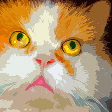Romeo the Cat Custom Digital Fine Art Pet Portrait by Animal Artist BZTAT