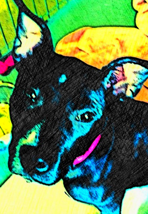 Black Pit Bull Mix Dog - Custom Digital Fine Art Pet Portrait by Animal Artist BZTAT