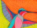 22. Hummingbird Card Drawing Card (Blank Inside)