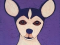 """Chihuahua"""