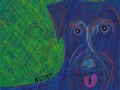 Contemporary Custom Pet Portrait Drawing by Animal Artist BZTAT