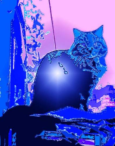 Blue ice Cat