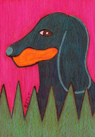 Dachshund-doxie-drawing-prismacolor-BZTAT