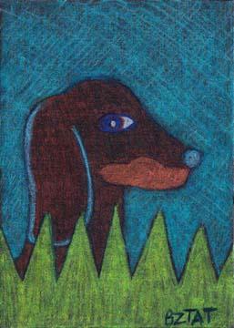 Dachsund-dog-drawing-ACEO-BZTAT