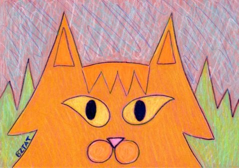 Orange-Maine-Coon-colorful-whimisical-drawing-BZTAT