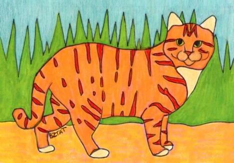 orange striped feral cat drawing