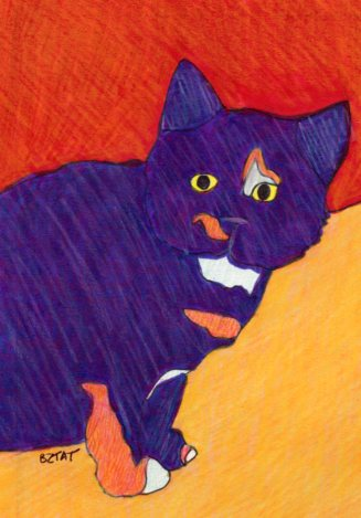 calico feral cat drawing