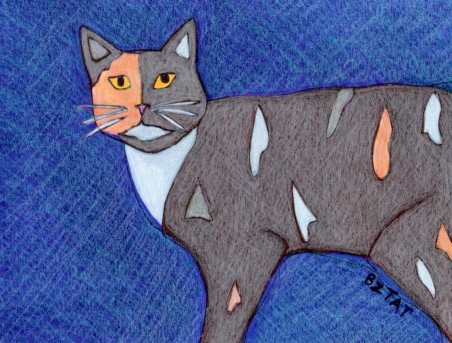 feral torbie cat drawing by BZTAT