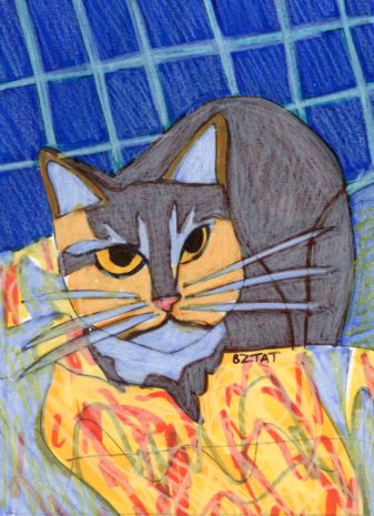Born Free: Feral Cat Drawing