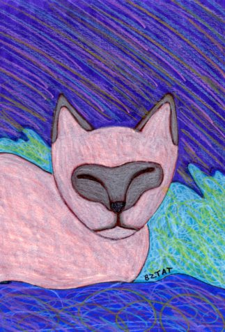 Born Free: Feral Cat Drawing #13