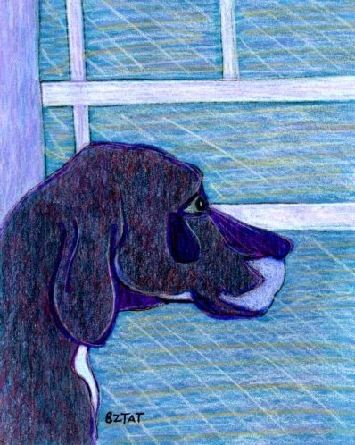 """""""Old Great Dane"""" drawing by BZTAT"""