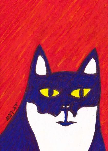 Tuxedo cat drawing by BZTAT