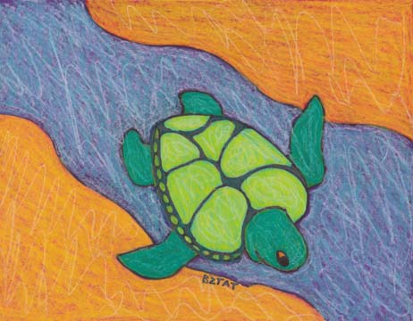 turtle drawing BZTAT