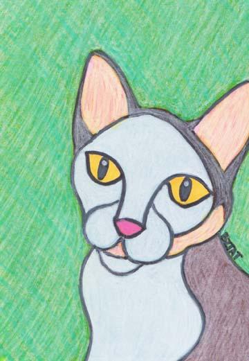 hazel torbie cat Drawing BZTAT