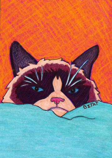 Grumpy Cat Drawing by BZTAT