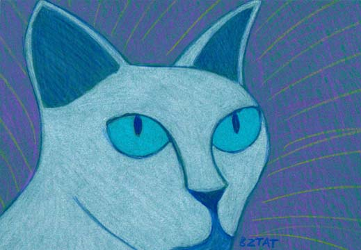 Tonkinese cat drawing BZTAT