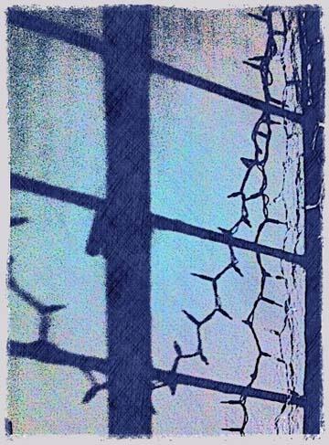 Forgotten View - Window digital art by BZTAT