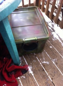 Feral cat shelter made by Peace for Pets