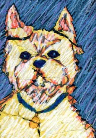 Contemporary Custom Pet Portrait Drawing by Animal Artist BZTAT